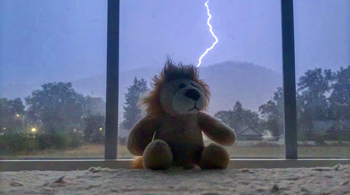 Mufasa the toy lion sitting in my window with a massive bolt of lightning firing behind him, illuminating the entire sky and my bedroom.