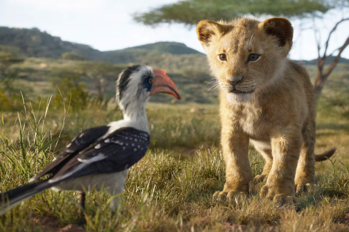 Simba and Zazu from The Lion King!