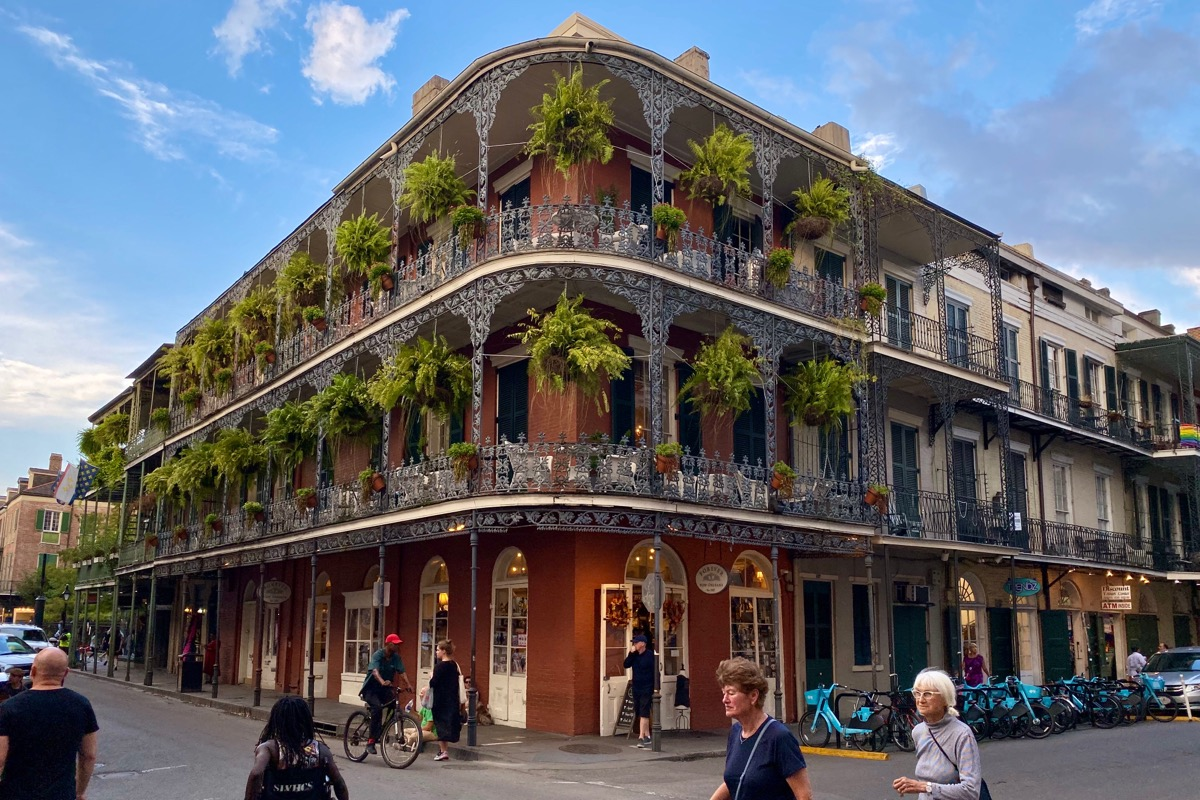 A photo of a beautiful New Orleans building with wrought iron railings and massive ferns hanging on the balconies.