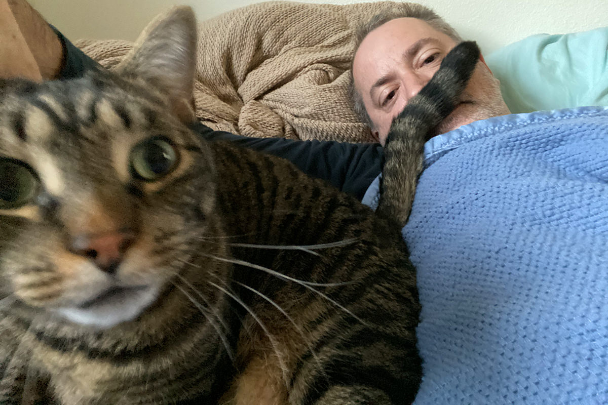 Me in bed with Jake, who is staring at the camera with his tail in my face under my nose like a giant mustache.