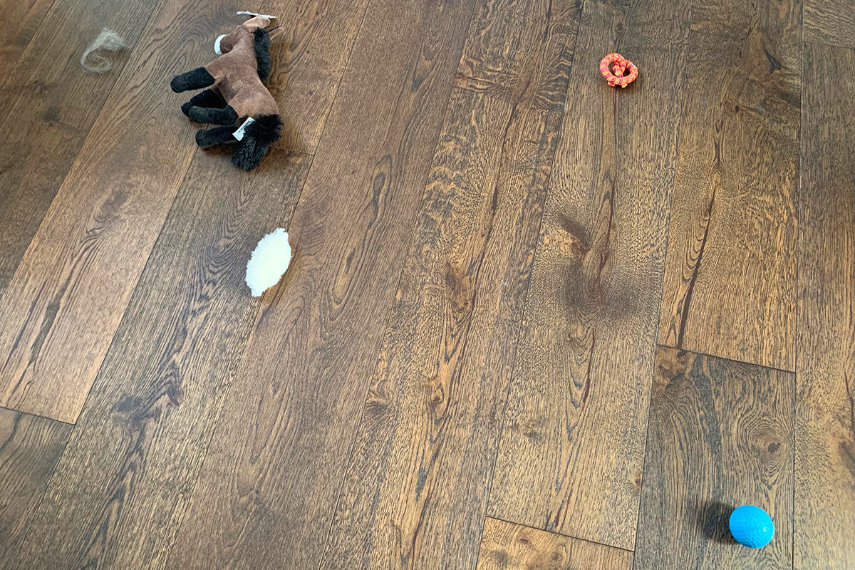 Cat toys and crap left on my bedroom floor.