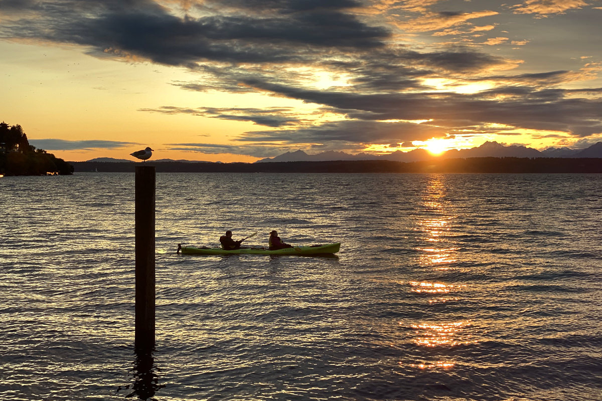 A shot of kayakers paddling in Elliot Bay at sundown while a bird watched from the top of a pole.
