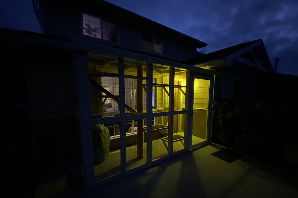 A photo of my catio encloser at night. The sky is glowing with a deep blue hue, illuminated by the moon, and a yellow light serenely glows inside the catio.