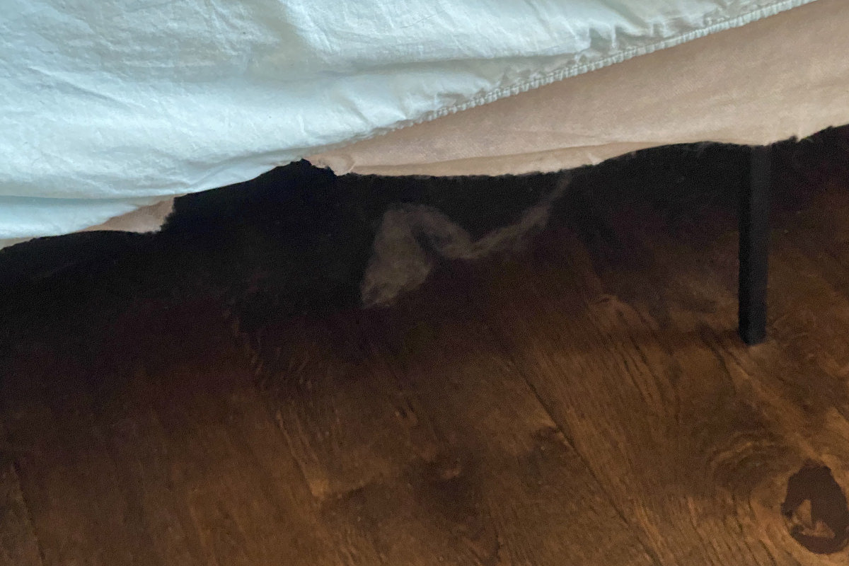 A shadowy shape under my bed resembling a snake.