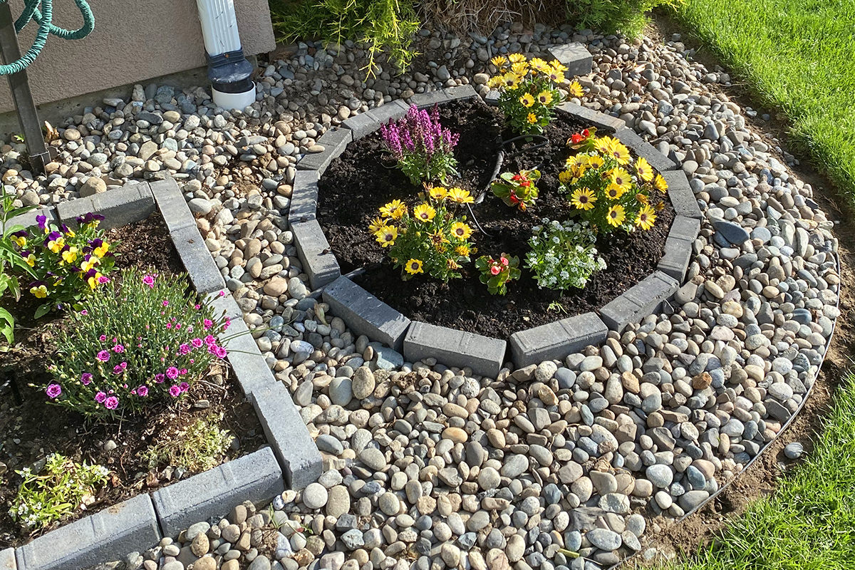 My flower circle... a circle of retaining bricks with dirt and flowers on the inside and river rocks around the outside.