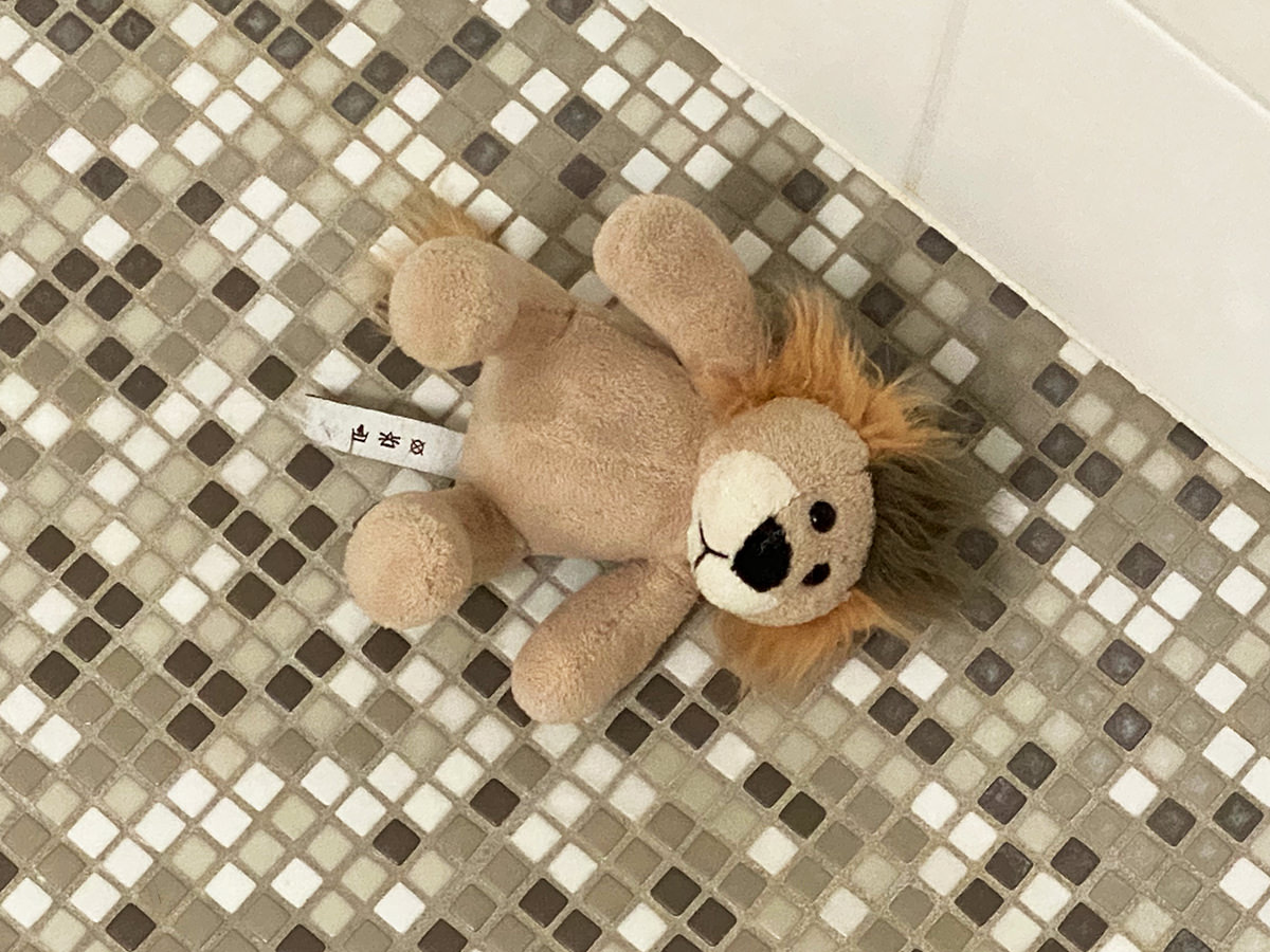 Mufasa, Jakes small plush lion toy, laying in my shower.