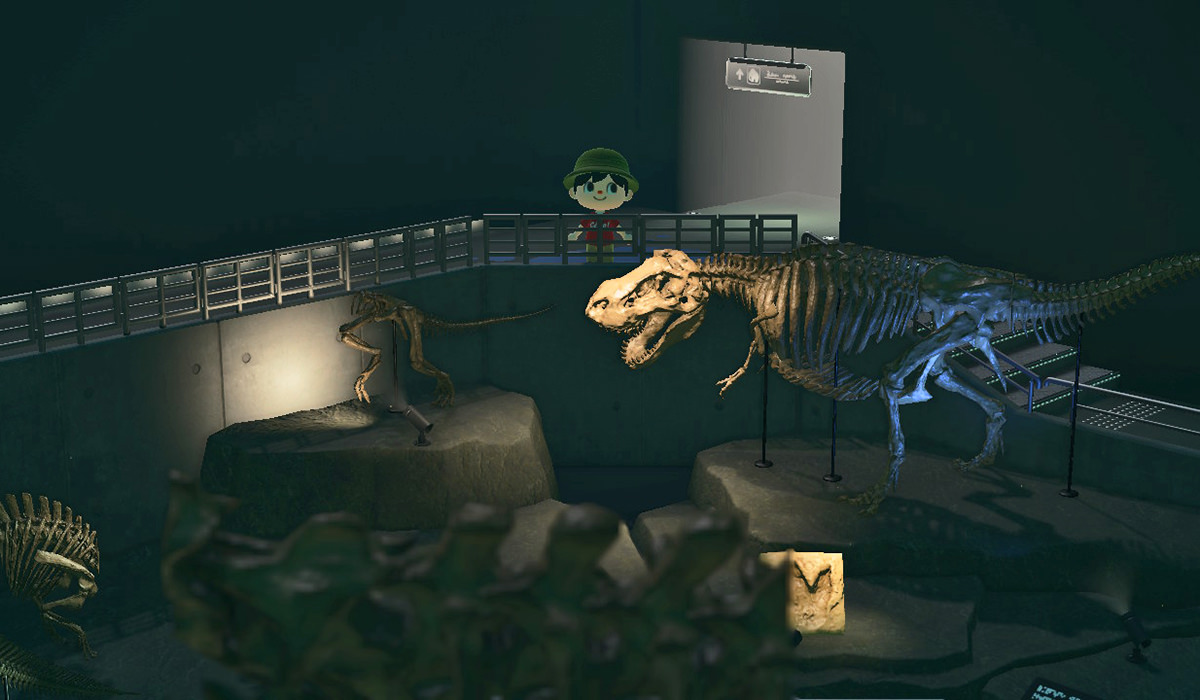 Inside the Museum: Donosaurs at the museum.
