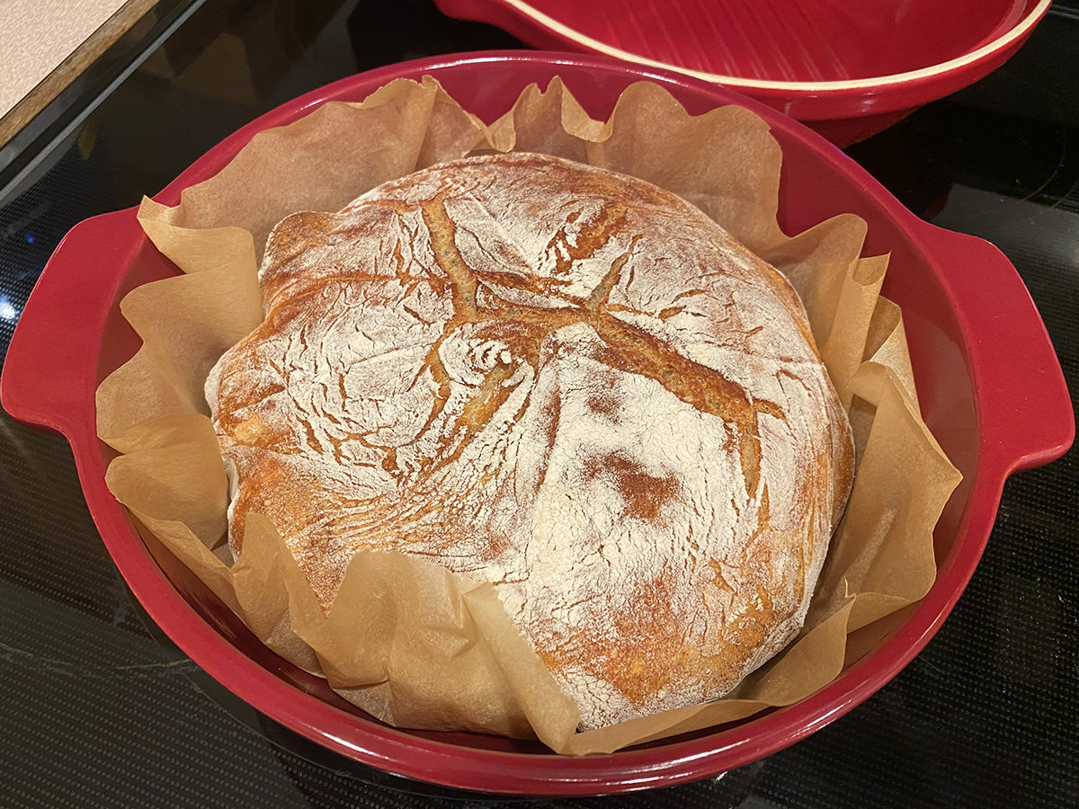 Bread sitting in a Dutch oven after baking.