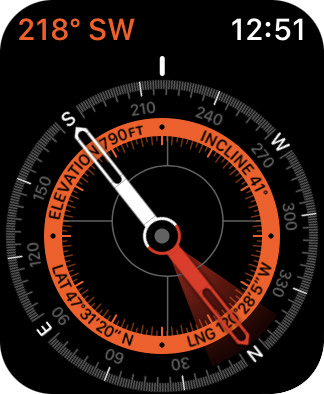 A beautiful compass on my Apple Watch!
