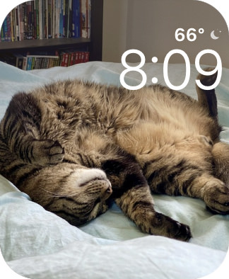 A photo of Jake my cat as a watch face.