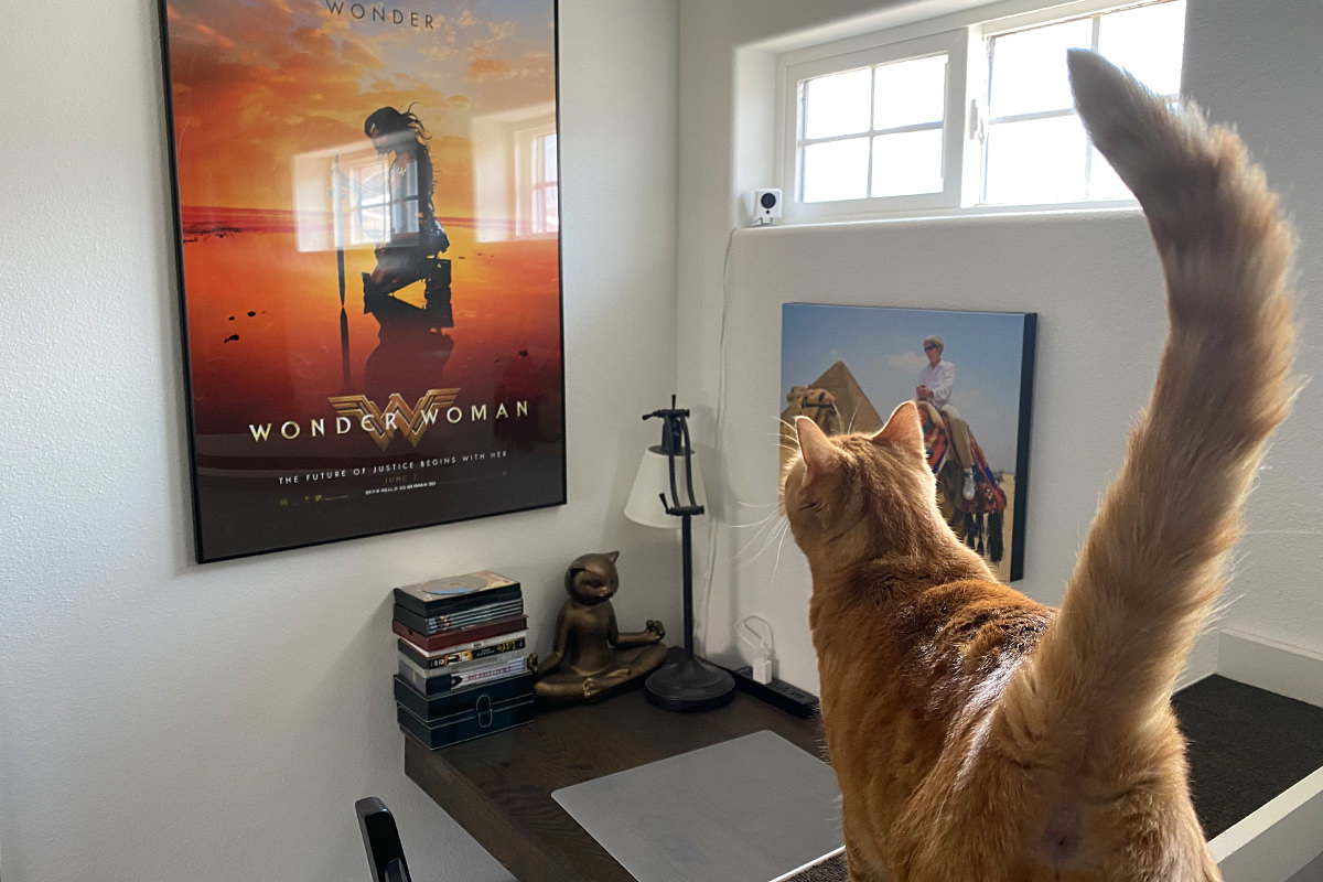 Jenny staring at a Wonder Woman poster.