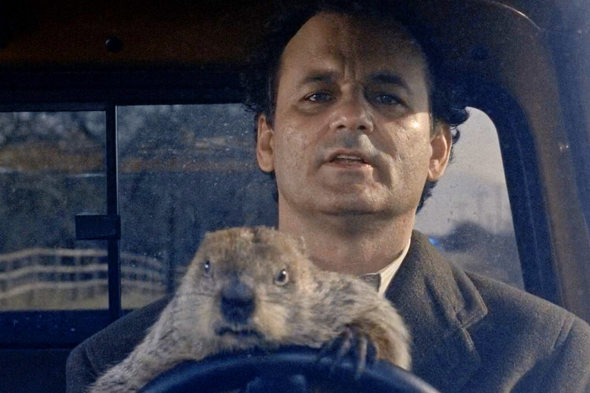 Bill Marray in a truck with a groundhog that's hanging onto the wheel looking angry.