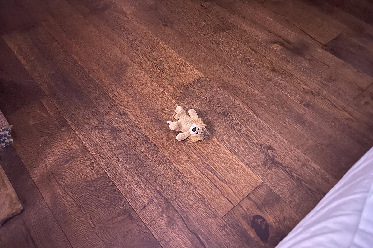 Mufasa on the floor.