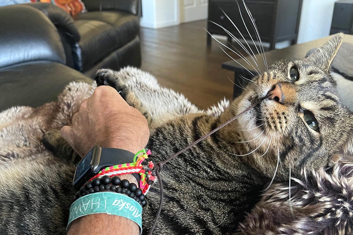 Jake chewing on my wristband.