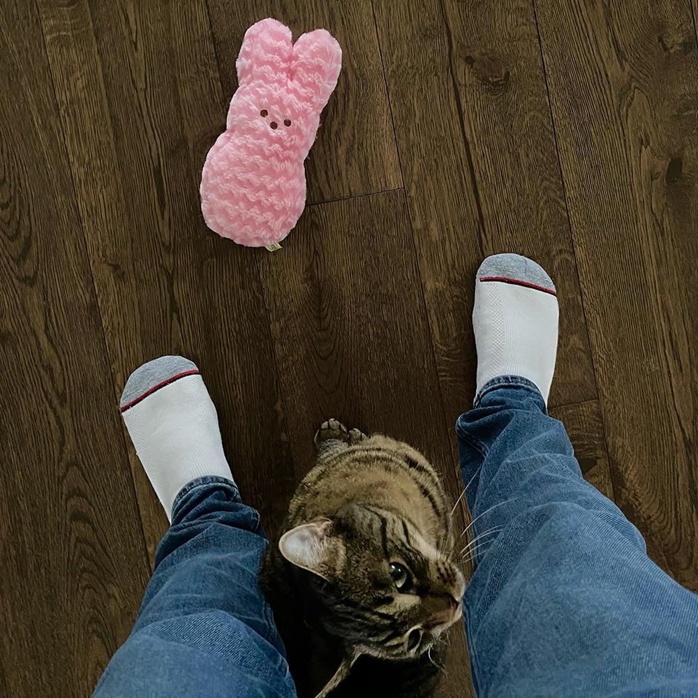 Jake brings me his big Peeps Bunny