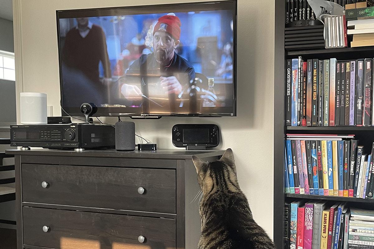 Jake watching Ted Lasso on my bedroom TV.