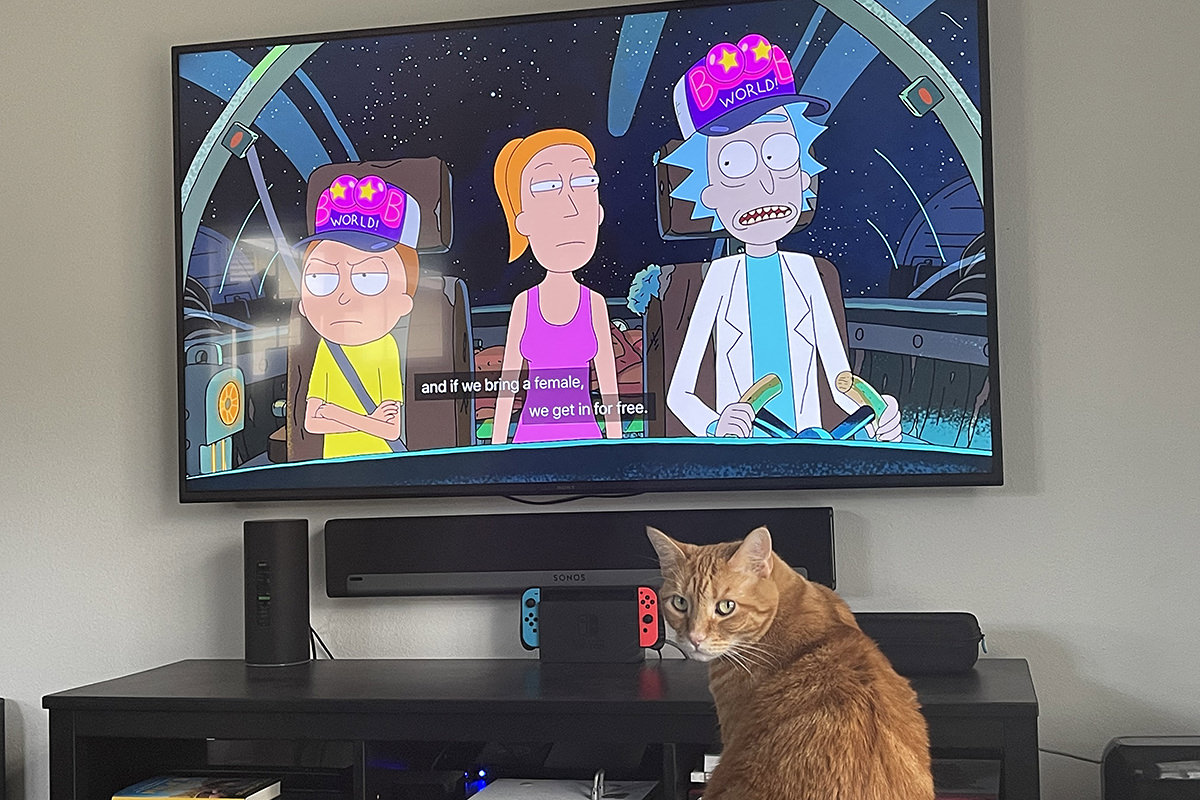 Jenny watching Rick and Morty on the living room TV... and looking back at me looking mildly peterbed.