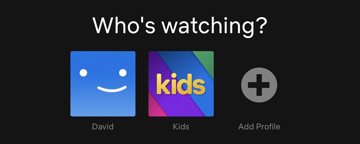 Netflix is asking WHO'S WATCHING? DAVID? KIDS? ADD PROFILE!