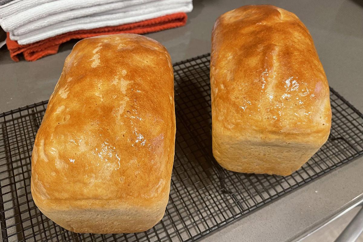 My baked SourJo bread looking delicious.